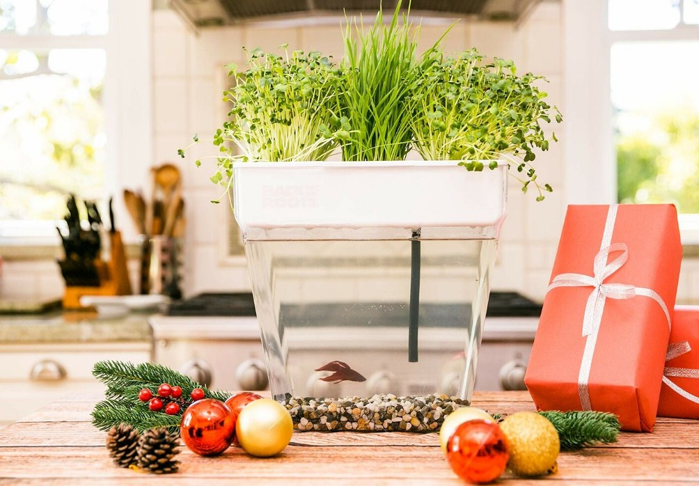 10 Best Indoor Garden System In 2019