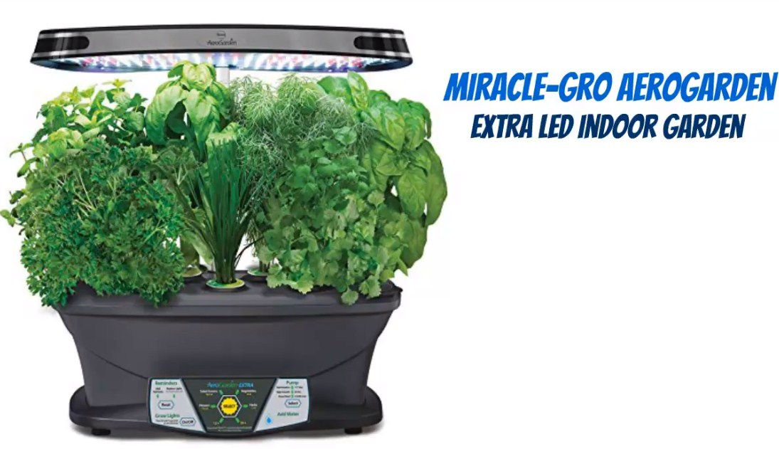Miracle-Gro AeroGarden Extra LED Indoor Garden with Gourmet Herb Seed Kit and Bonus Cherry Tomato Seed Pod Kit for table