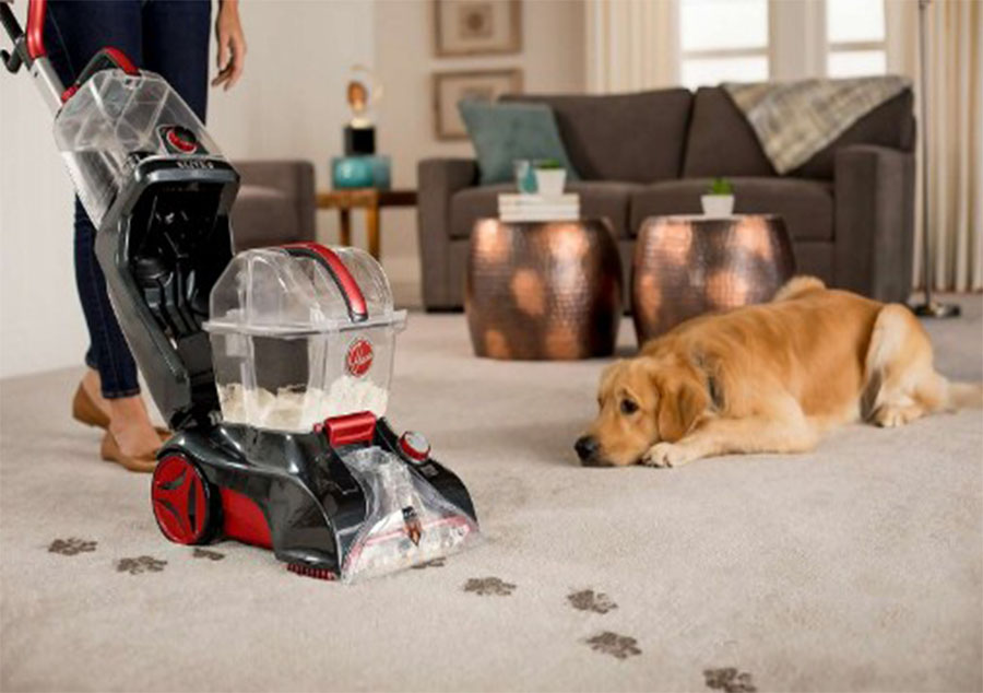 Best Hoover Pet Carpet Cleaner Dog watching when cleaning carpet