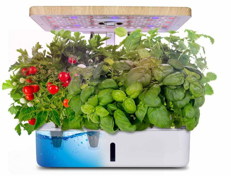 Moistenland Growing Indoor Garden System Starter Kit