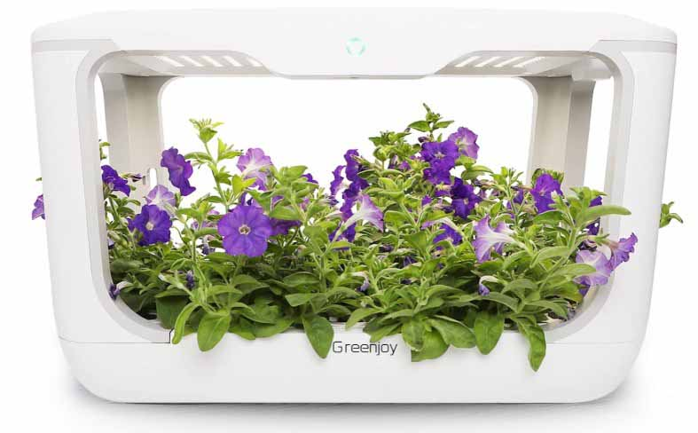Greenjoy Indoor Herb Garden Kit, Hydroponics Growing System
