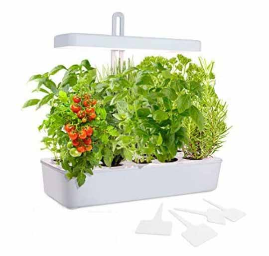 GrowLED LED Height Adjustable,10-Pod Indoor Garden Germination Kit, Self Watering Herb Garden